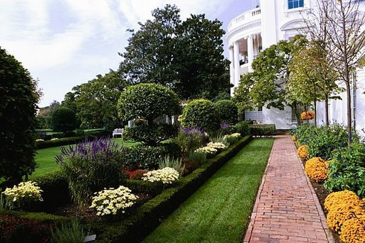 Salvia's purple hues balance the Chrysanthemums' orange flair in the Jacqueline Kennedy Garden of the White House gardens during the 2004 season. White House photo by Tina Hager.