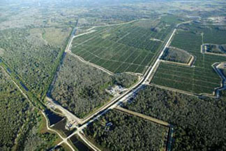 The USACE water retention area and feeder canal of the Seminole Big Cypress Water Conservation Project will enhance the quality of water in the 52,000-acre Big Cypress Reservation of the Seminole Tribe in Florida and nearby Big Cypress National Reserve and Everglades. The project will also improve wetlands by returning more natural hydroperiods. (USACE)