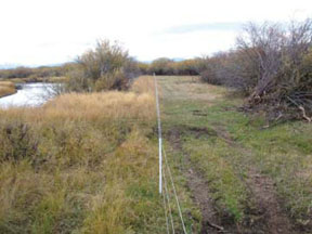 The Intermountain West Joint Venture, composed of multiple partners under the North American Waterfowl Management Plan, worked with ranchers to install 12 miles of wildlife-friendly fencing to improve 1,200 acres of riparian wetlands along the Big Hole River in Montana. (FWS)