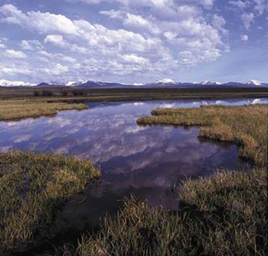 Planning, modeling, tracking accomplishments, monitoring effectiveness, research, and adaptive management will become increasingly important as federal agencies, working with partners, continue to restore or create, improve, and protect wetlands and embark on habitat adaptation to climate change. (FWS)