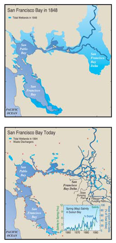 The San Francisco Bay estuary and Delta at the time of the discovery of gold in the Sierra Nevada foothills (first panel) and at present (second panel). (USGS)