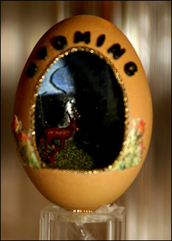 Wyoming Egg
