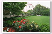 Link to White House Gardens – Summer Photo Essays