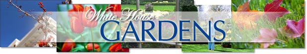 Link to White House Gardens Front Page