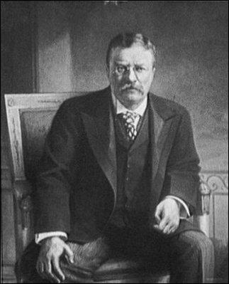 presidency of theodore roosevelt essay