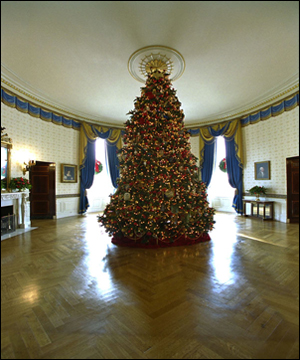 The Blue Room has long been the location of the official White House Christmas Tree. Ed and Cindy Hedlund and their son Thomas, of Hedlund Christmas Farm in Elma, Washington presented this year's 18-foot noble fir to President George W. Bush and wife Laura Bush. White House photo by Tina Hager.