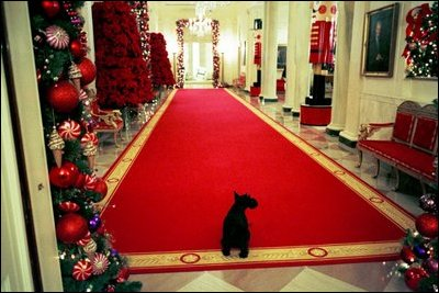 As the White House is decorated for the season's Christmas receptions, Barney takes his own private tour of the Cross Hall.