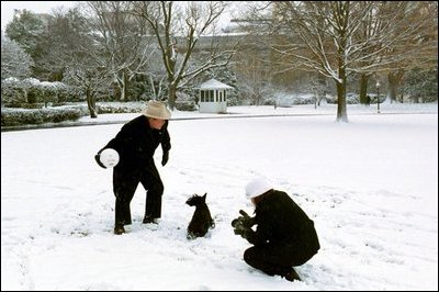 President Bush and Barney take a few moments on the South Lawn to enjoy the season's first snowfall.