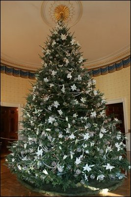 the white house christmas tree a large fraser fir is seen fully decorated in - Fully Decorated Christmas Trees
