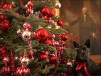 Miss Beazley, with George Washington looking on, gets a closer look at the Christmas decorations Tuesday, Nov. 29, 2006, in the East Room of the White House.