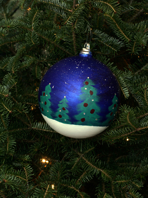 Pennsylvania Congressman Bill Shuster selected artist Bethany Elliot to decorate the 9th District's ornament for the 2008 White House Christmas Tree.