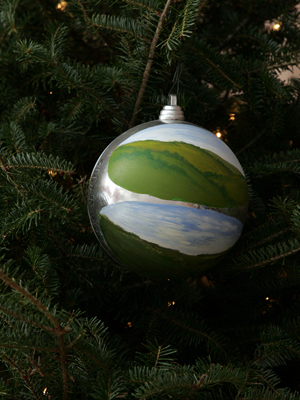 Iowa Congressman Steve King selected artist Dotty Seymour to decorate the 5th District's ornament for the 2008 White House Christmas Tree.