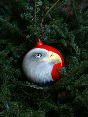 Wisconsin Congressman Steve Kagen selected artist Judy Pubanz to decorate the 8th District's ornament for the 2008 White House Christmas Tree.