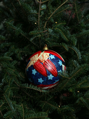 Missouri Congressman Sam Graves selected artist Vicky Strong to decorate the 6th District's ornament for the 2008 White House Christmas Tree.