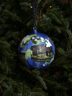 Idaho Congressman Mike Simpson selected the Color Pencil Society of America, District Chapter 217 of Idaho Falls to decorate the 2nd District's ornament for the 2008 White House Christmas Tree.