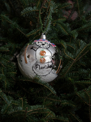 Florida Congressman Robert Wexler selected artist Angelina Brier to decorate the 19th District's ornament for the 2008 White House Christmas Tree.