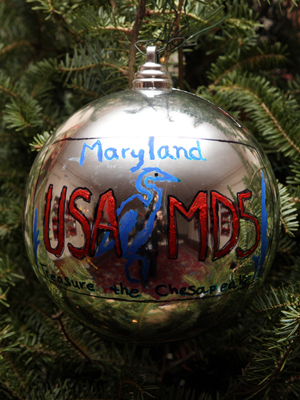 Maryland Congressman Steny H. Hoyer selected artist Ian Goldin to decorate the 5th District's ornament for the 2008 White House Christmas Tree.