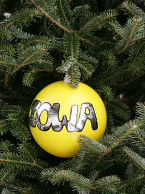 Iowa Congressman Leonard Boswell selected artist Laura McNichols to decorate the 3rd District's ornament for the 2008 White House Christmas Tree.