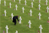 Remembering and Commemorating Veterans