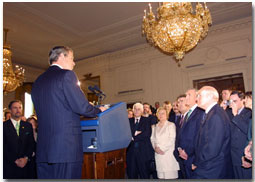 President Bush speaks to Irish Americans in the White House.