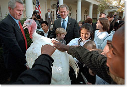 "After pardoning a turkey from the Thanksgiving dinner table, President George W. Bush invites children to pet Liberty, the freed bird. ""Through the generations, our country has known its share of hardships. And we've been through some tough times, some testing moments during the last months,"" said President Bush. ""Yet, we've never lost sight of the blessings around us: the freedoms we enjoy, the people we love, and the many gifts of our prosperous land."". White House photo by Susan Sterner."
