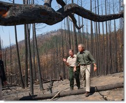 President Bush tours a national park.