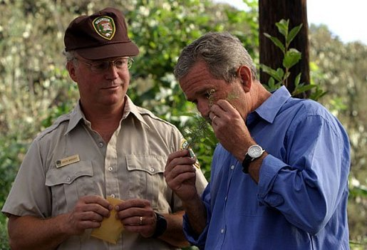 President George W. Bush smells a branch of sage with Ralph Waycott, volunteer coordinator of the Rancho Sierra Vista Nursery, during a tour of the Santa Monica Mountains National Recreation Area in Thousand Oaks, Calif. File photo. White House photo by Paul Morse.