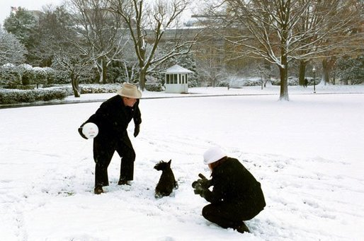 President Bush and Barney take a few moments on the South Lawn to enjoy the season's first snowfall. White House photo by Tina Hager