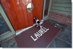 Spot arrives for a meeting at Laurel Cabin at Camp David, Feb. 23, 2001.  White House photo by Eric Draper