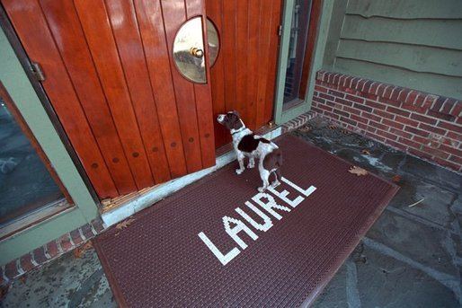 Spot arrives for a meeting at Laurel Cabin at Camp David, Feb. 23, 2001. White House photo by Eric Draper.