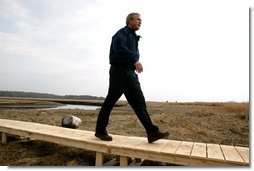 "Commemorating Earth Day, President George W. Bush visits the Wells National Estuarine Research Reserve in Wells, Maine, Thursday, April 22, 2004. During his visit, President Bush announced a program to increase the amount of wetlands in the United States. ""To do so, we will work to restore and to improve and to protect at least three million acres of wetlands over the next five years,"" said the President.  White House photo by Eric Draper"