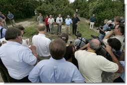 After touring the hurricane damage to Marty and Pat McKenna's orange groves, President George W. Bush addresses the media at the their farm in Lake Wales, Fla., Sept. 29, 2004.   White House photo by Eric Draper