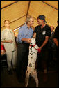 President Bush talks with firefighter Gary Garwood of Pleasantview, Ill., and Louie, who was rescued by Garwood, a first-responder in Hurricane Katrina's aftermath, and renamed for the state of Louisiana. The exchange came as the President visited a base camp in Algiers, La., Sunday, Sept. 11, 2005, during his return to the Gulf Coast. White House photo by Paul Morse