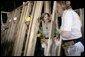 Laura Bush helps push a support wall into place, Tuesday, Oct. 11, 2005, while visiting a Habitat for Humanity building site in Covington, La., where homes are being built for victims of Hurricane Katrina. White House photo by Eric Draper
