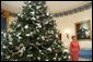 Laura Bush stands next to the Blue Room Christmas tree, Wednesday, Nov. 30, 2005, as she answers questions during the press preview of the White House Christmas decorations. White House photo by Shealah Craighead