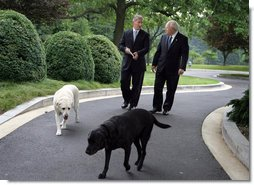 Vice President Dick Cheney is joined by his dogs Dave, left, and Jackson, right, during an interview with John King of CNN, Thursday, June 22, 2006, at the Vice President's Residence at the Naval Observatory in Washington D.C. White House photo by David Bohrer