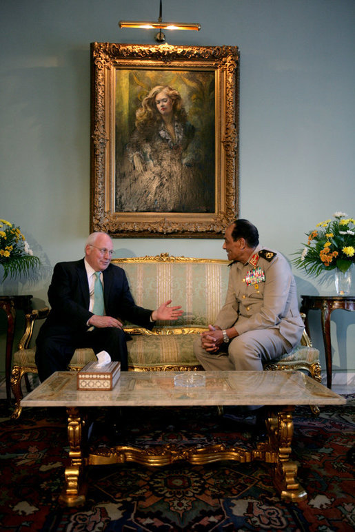 Vice President Dick Cheney gestures during a meeting with Egyptian Field Marshal Mohamed Hussein Tantawi Sunday, May 13, 2007, at the Presidential Palace in Cairo. White House photo by David Bohrer