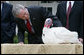 President George W. Bush offers an official pardon to May, the 2007 Thanksgiving Turkey, during festivities Tuesday, Nov. 20, 2007, in the Rose Garden of the White House. In pardoning May, and the alternate, Flower, the President said,