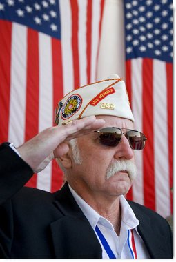 Veteran Lloyd Gibbs of the Army/Navy Union USA salutes Tuesday, Nov. 11, 2008, during Veterans Day ceremonies at Arlington National Cemetery in Arlington, Va.