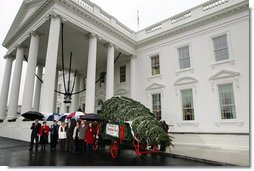 Mrs. Laura Bush welcomes the arrival of the official White House Christmas tree Sunday, Nov. 30, 2008, to the North Portico of the White House. The Fraser Fir tree, from the River Ridge Farms in Crumpler, N.C., will be on display in the Blue Room of the White House for the 2008 Christmas season. Joining Mrs. Bush, from left are, Mark Steelhammer, president of National Christmas Tree Association, his wife Luanne, Carol Pennington, Ann Estes, Russell Estes of River Ridge Farms in Crumpler, NC, Michelle Davis, and Jessie Davis of River Ridge Farms in Crumpler, NC. White House photo by Joyce N. Boghosian