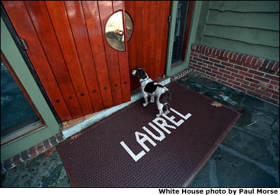 Spotty stands outside a door at Camp David. White House photo by Paul Morse.