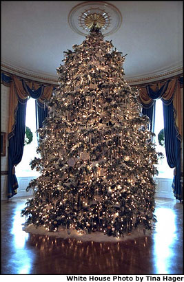2001 white house christmas tree white house photo by tina hager - Christmas Tree White